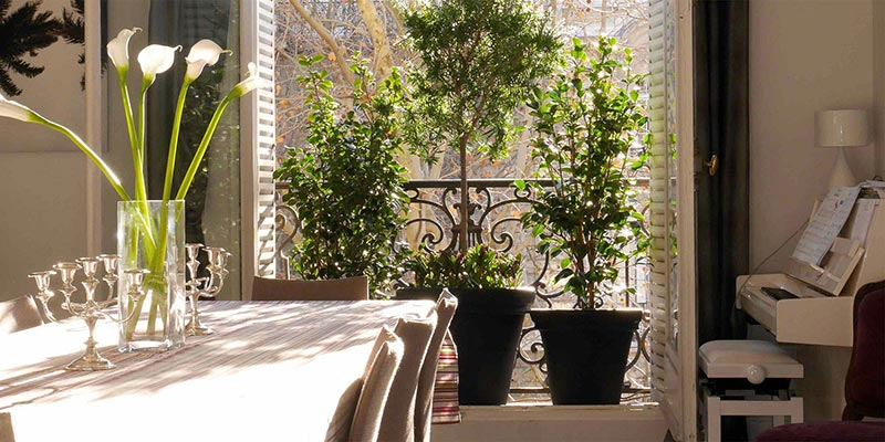 Urban green un jardin vos fen tres paysagiste paris for Jardin interieur appartement