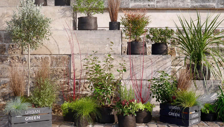 Urban green un jardin vos fen tres paysagiste paris for Jardin oriente est